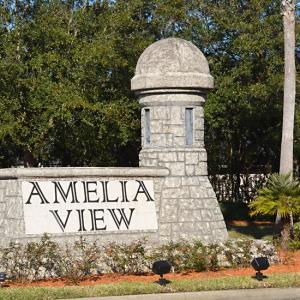 Amelia View Image #1
